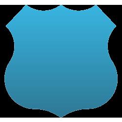Badge Car Magnet