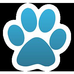 Cat Paw Car Magnet