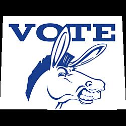 Colorado Vote Democrat Decal