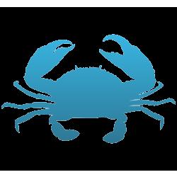 Crab Vinyl Decal