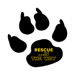 Rescue Dog Print Decal