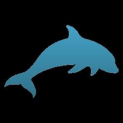 Dolphin Temporary Tattoo