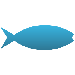 Jesus Fish Decal