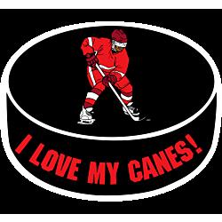 I Love My Hockey Team Decal