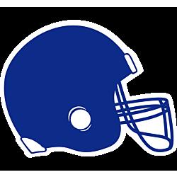 Helmet Temporary Tattoo