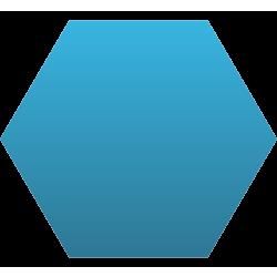 Hexagon Car Magnet