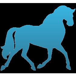 Horse Temporary Tattoo