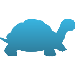 Land Turtle Temporary Tattoo