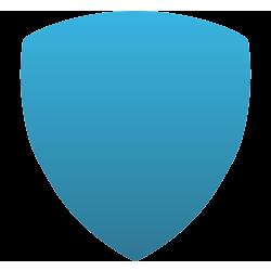 Shield Car Magnet