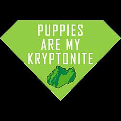 Kryptonite Puppies Superman Magnet