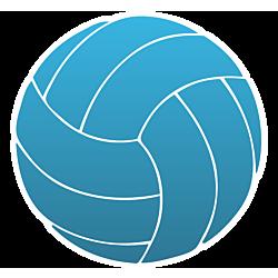 Volleyball Temporary Tattoo