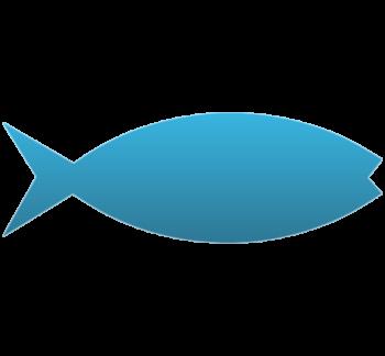 Jesus Fish Temporary Tattoo