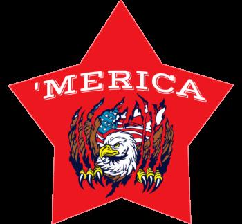 'Merica Star Car Magnet