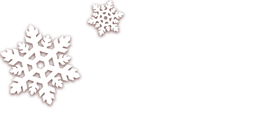 Shipping Method: Standard - December 12th, Shipping Method: Fast - December 15th, Shipping Method: Fast - December 20th.