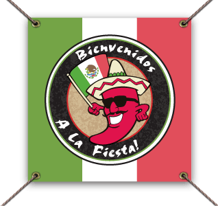 Picture of a Cinco De Mayo vinyl banner example